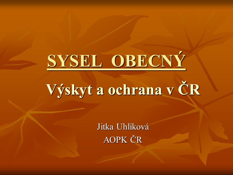 Výskyt a ochrana v ČR Jitka Uhlíková AOPK ČR