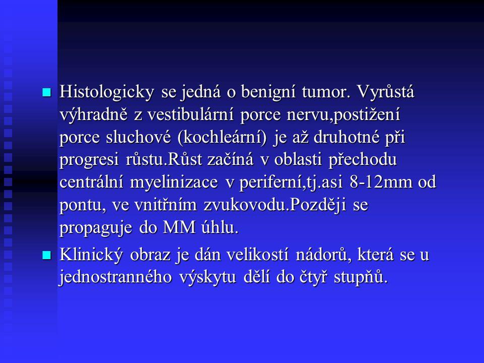 Histologicky se jedná o benigní tumor