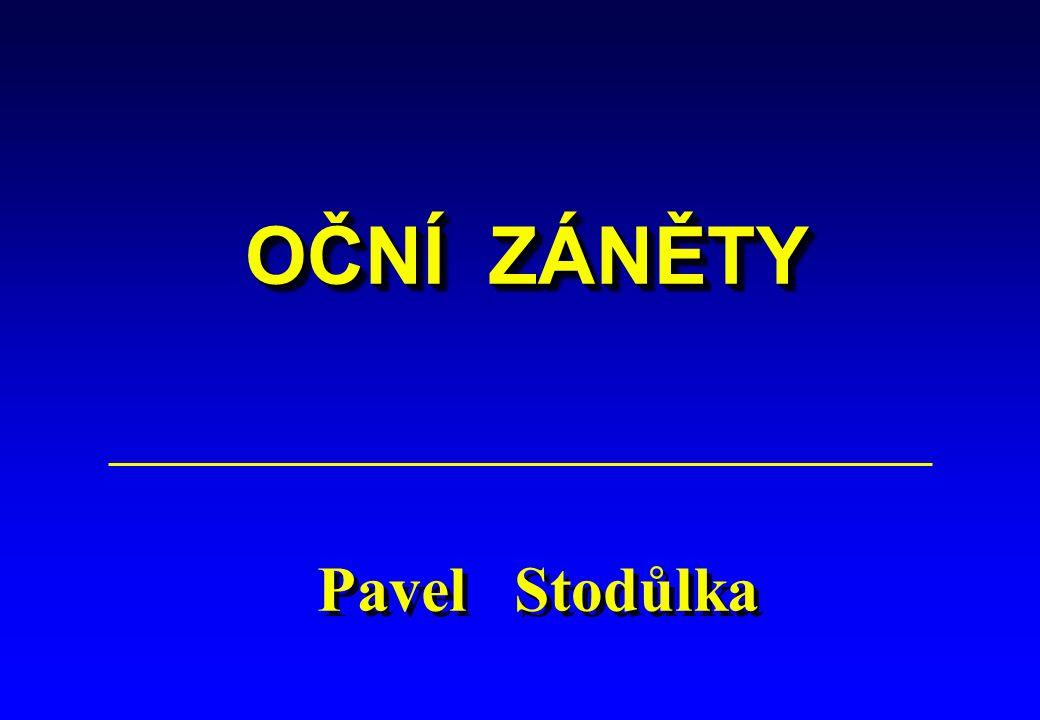 OČNÍ ZÁNĚTY Pavel Stodůlka 1