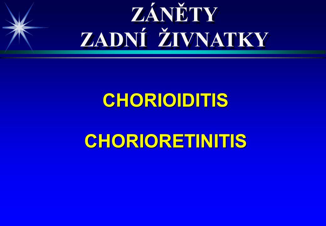 ZÁNĚTY ZADNÍ ŽIVNATKY CHORIOIDITIS CHORIORETINITIS 4