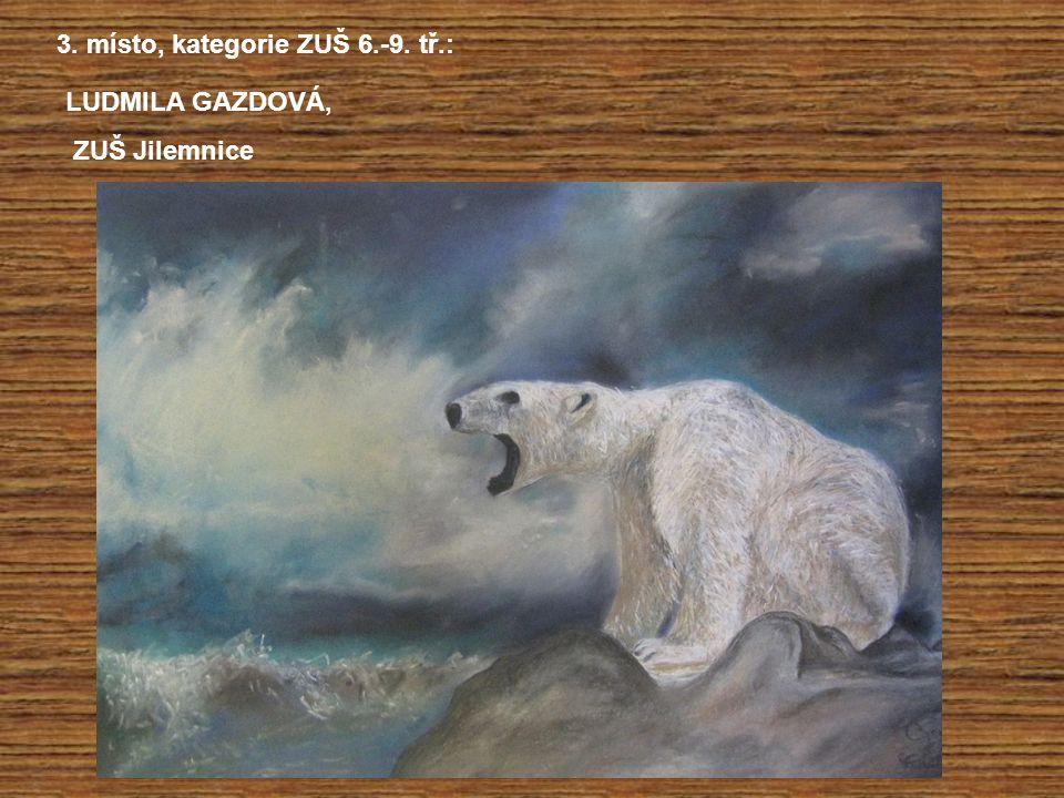 3. místo, kategorie ZUŠ 6.-9. tř.: