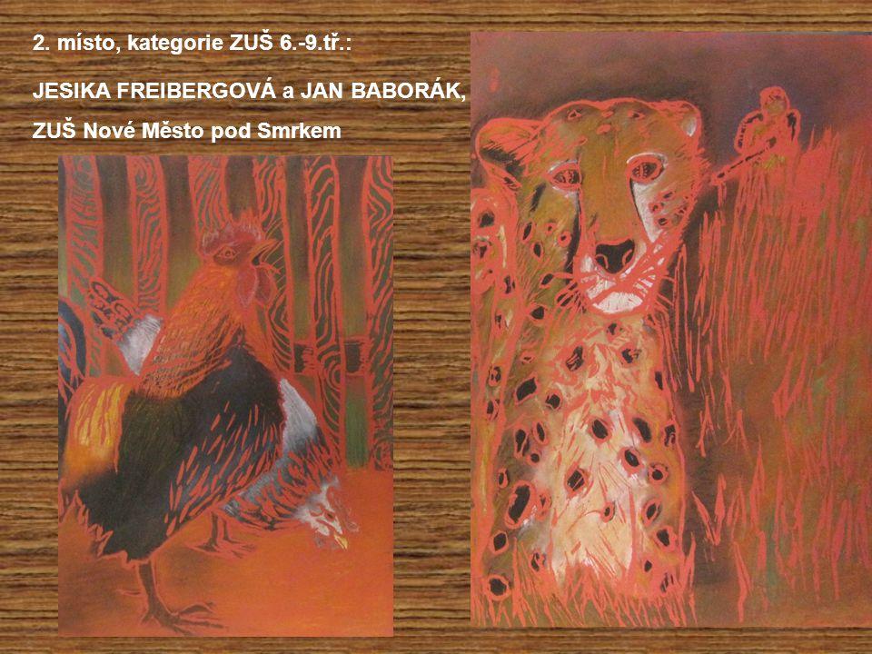 2. místo, kategorie ZUŠ 6.-9.tř.: