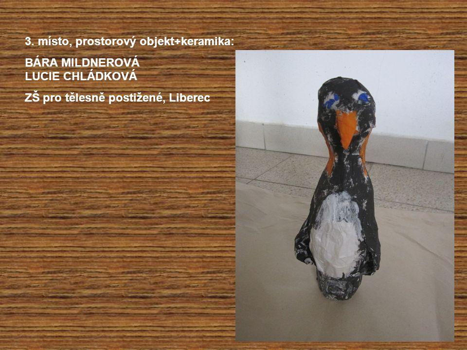 3. místo, prostorový objekt+keramika: