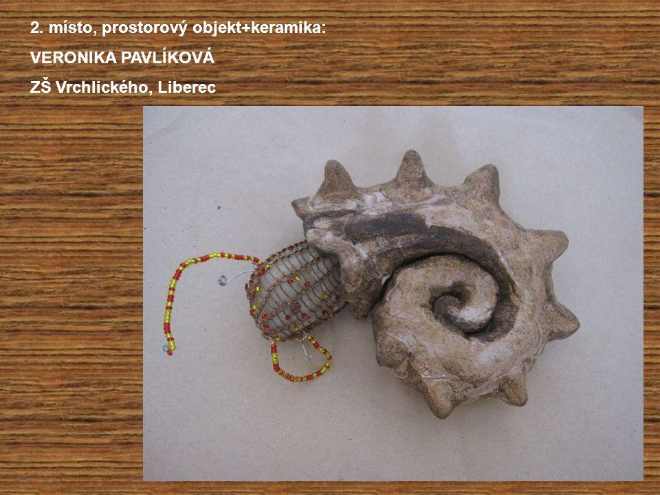 2. místo, prostorový objekt+keramika: