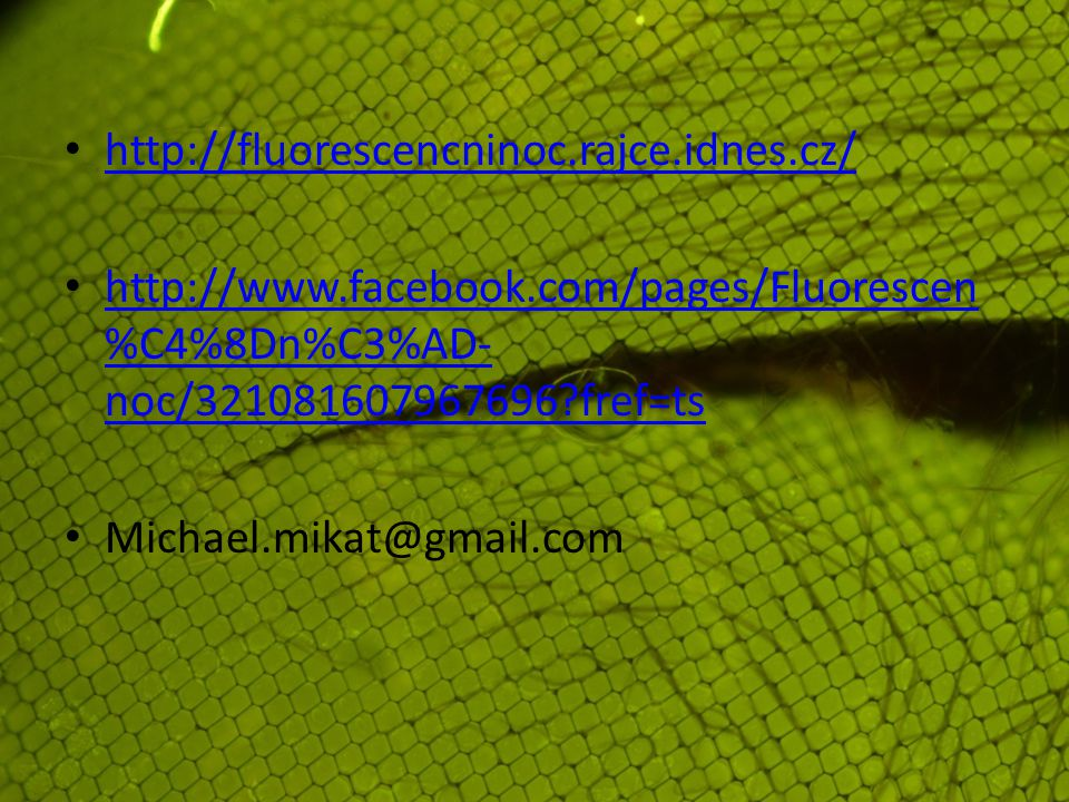 http://fluorescencninoc.rajce.idnes.cz/ http://www.facebook.com/pages/Fluorescen%C4%8Dn%C3%AD-noc/321081607967696 fref=ts.