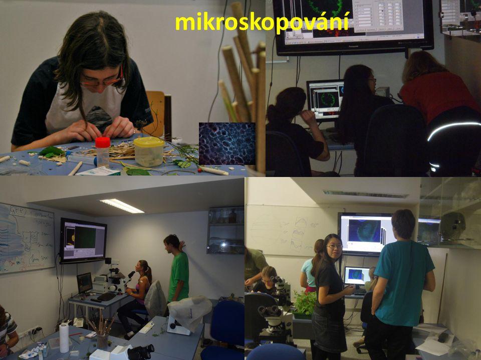 mikroskopování