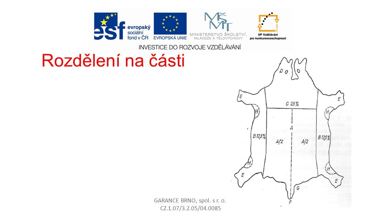 Rozdělení na části GARANCE BRNO, spol. s r. o. CZ.1.07/3.2.05/04.0085