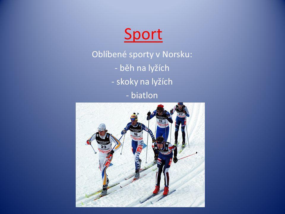 Oblíbené sporty v Norsku: běh na lyžích skoky na lyžích biatlon
