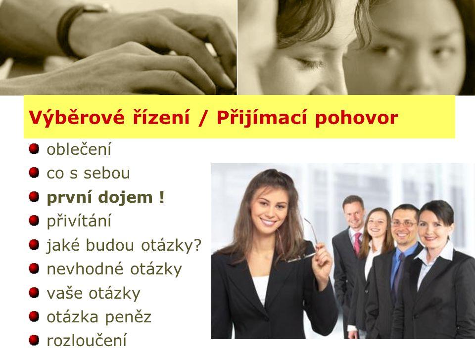 Výběrové řízení / Přijímací pohovor