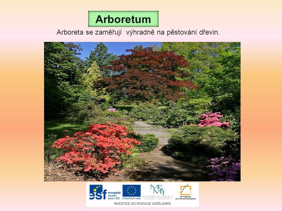 Arboretum Arboreta se zaměřují výhradně na pěstování dřevin.