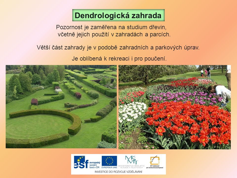 Dendrologická zahrada
