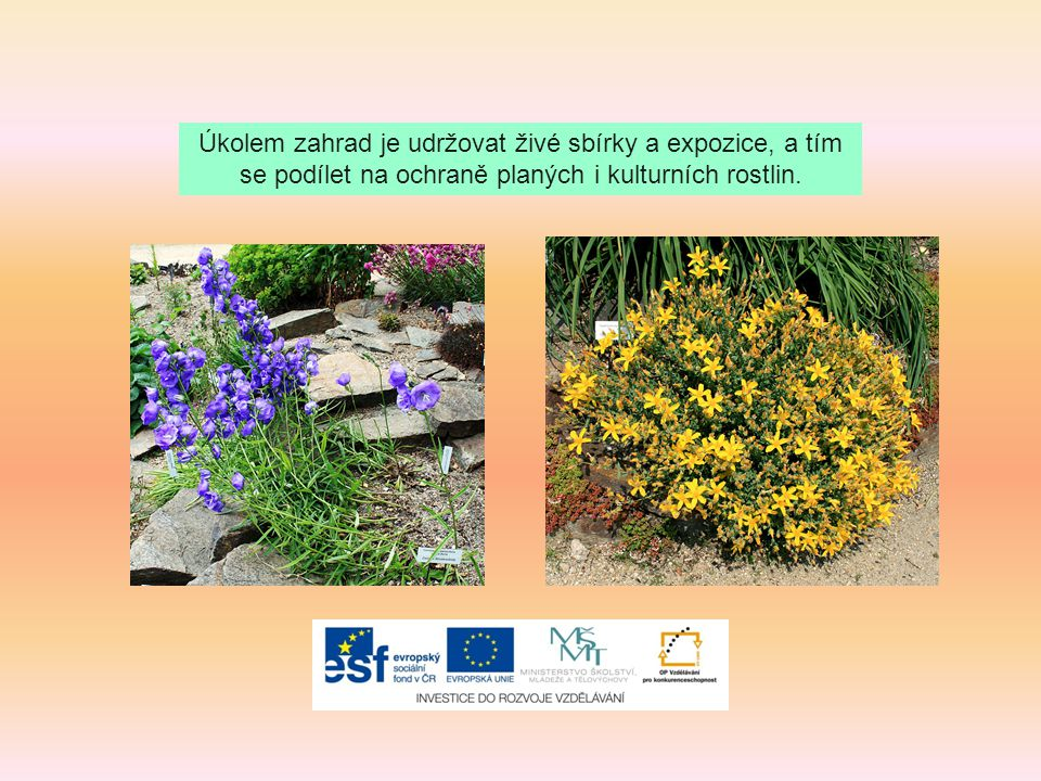 Úkolem zahrad je udržovat živé sbírky a expozice, a tím se podílet na ochraně planých i kulturních rostlin.
