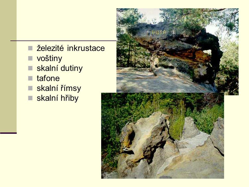 železité inkrustace voštiny skalní dutiny tafone skalní římsy skalní hřiby