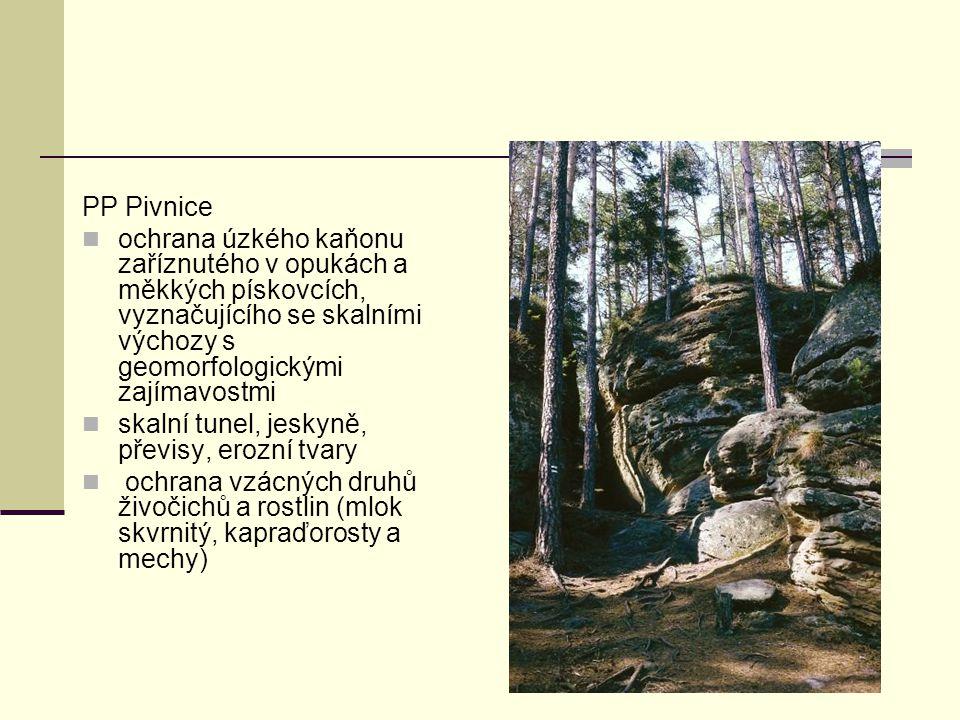 PP Pivnice ochrana úzkého kaňonu zaříznutého v opukách a měkkých pískovcích, vyznačujícího se skalními výchozy s geomorfologickými zajímavostmi.