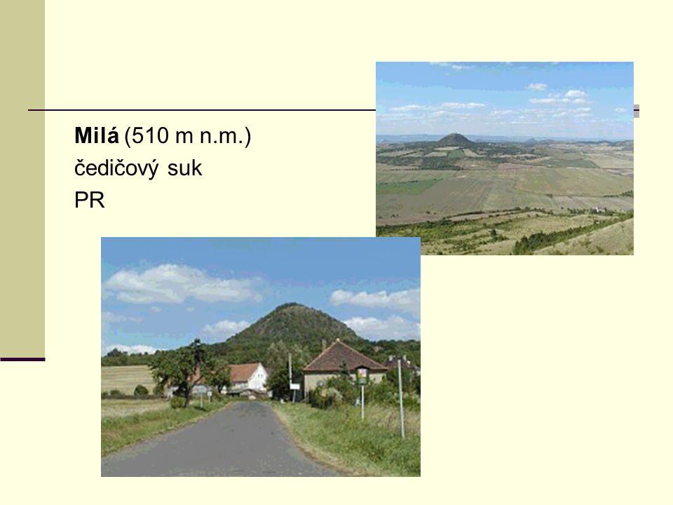 Milá (510 m n.m.) čedičový suk PR