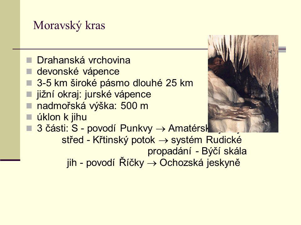 Moravský kras Drahanská vrchovina devonské vápence