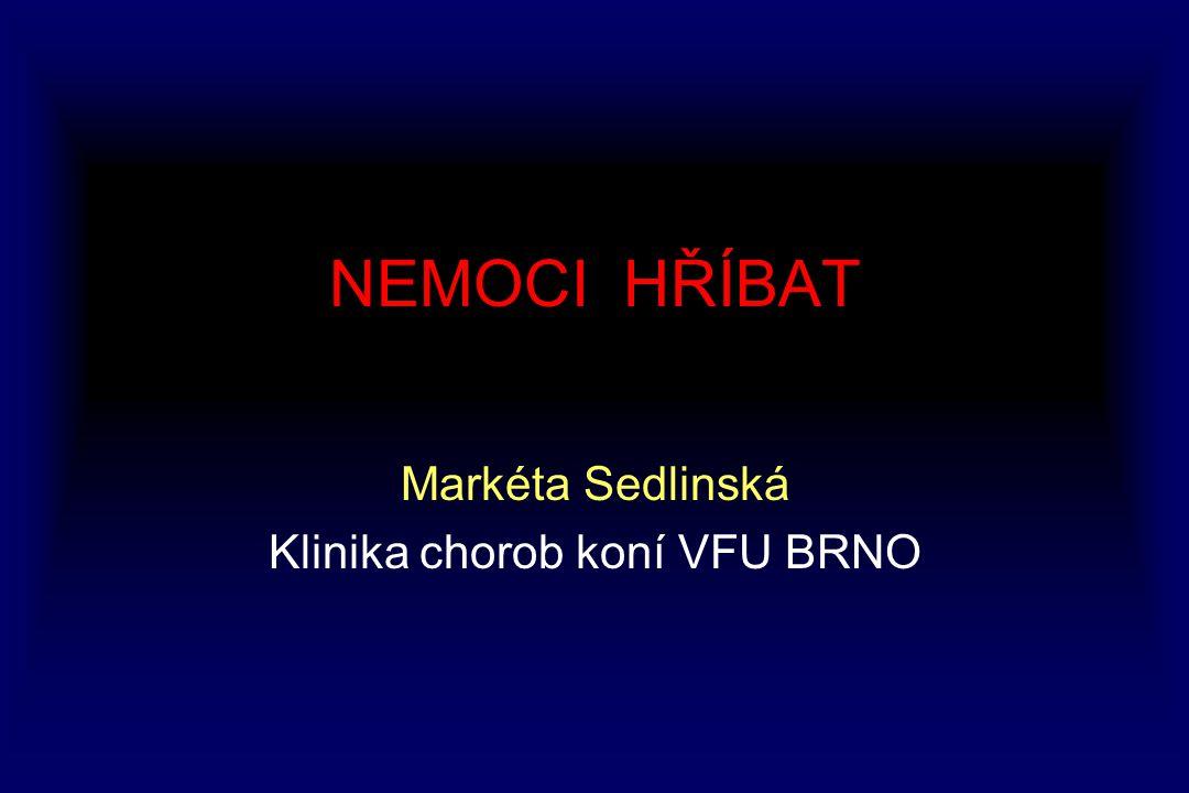 Markéta Sedlinská Klinika chorob koní VFU BRNO