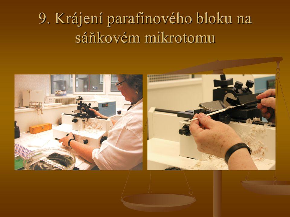 9. Krájení parafinového bloku na sáňkovém mikrotomu