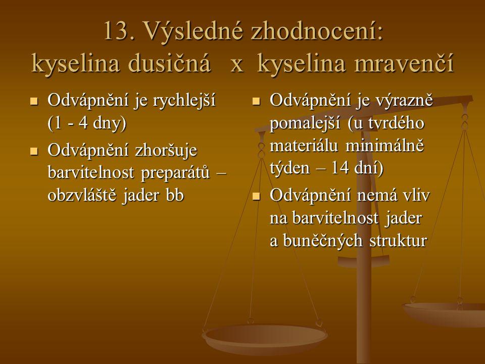 13. Výsledné zhodnocení: kyselina dusičná x kyselina mravenčí