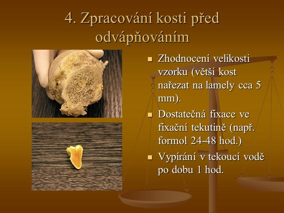4. Zpracování kosti před odvápňováním