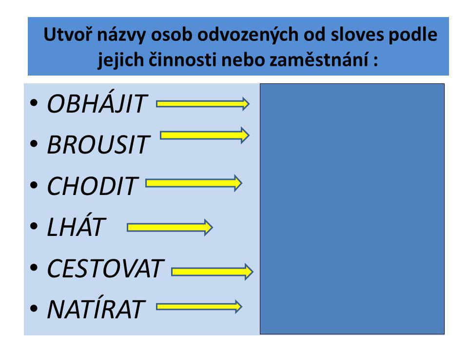 Utvoř názvy osob odvozených od sloves podle jejich činnosti nebo zaměstnání :
