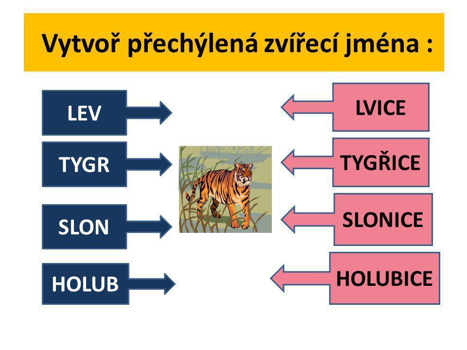 Vytvoř přechýlená zvířecí jména :