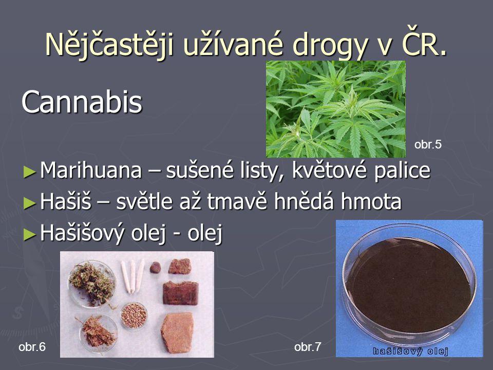 Nějčastěji užívané drogy v ČR.