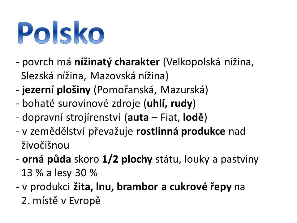 Polsko - povrch má nížinatý charakter (Velkopolská nížina,