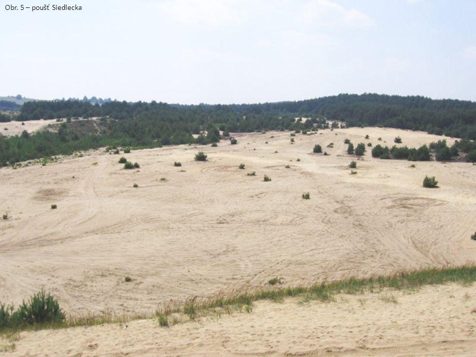 Obr. 5 – poušť Siedlecka
