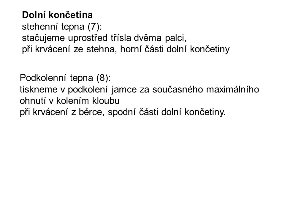 Dolní končetina stehenní tepna (7):