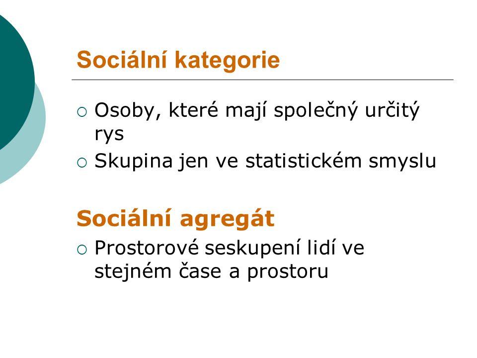 Sociální kategorie Sociální agregát