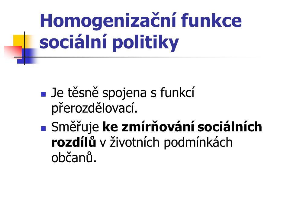 Homogenizační funkce sociální politiky