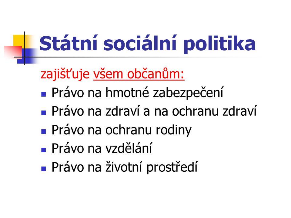 Státní sociální politika