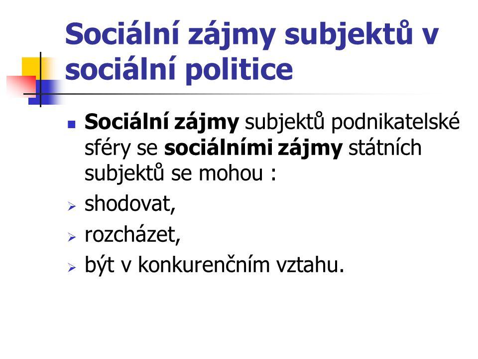 Sociální zájmy subjektů v sociální politice