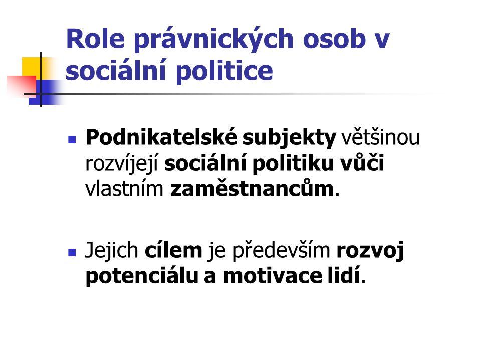 Role právnických osob v sociální politice