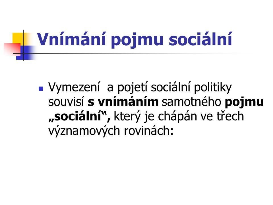 Vnímání pojmu sociální