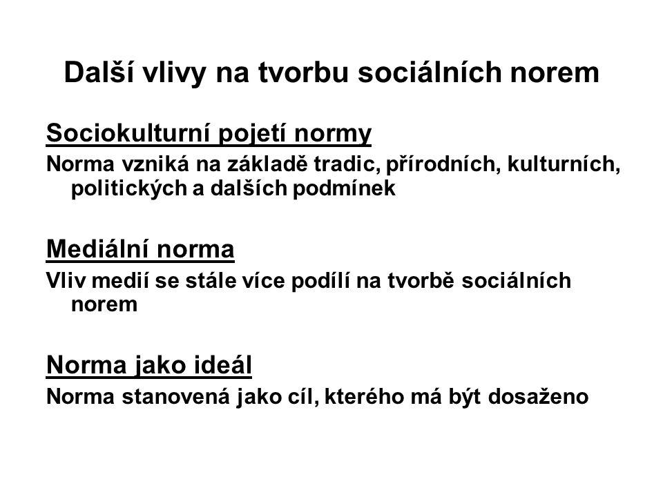 Další vlivy na tvorbu sociálních norem