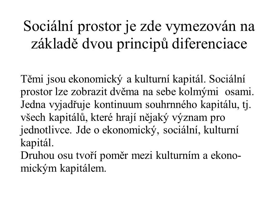Sociální prostor je zde vymezován na základě dvou principů diferenciace