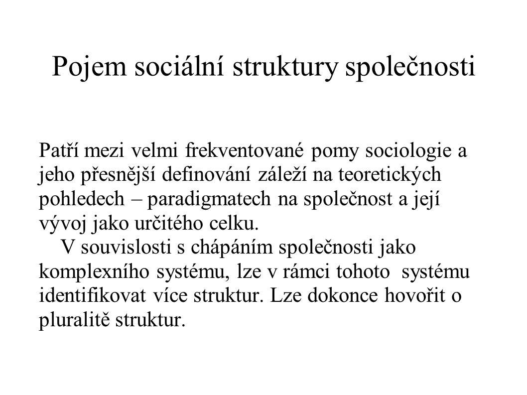 Pojem sociální struktury společnosti