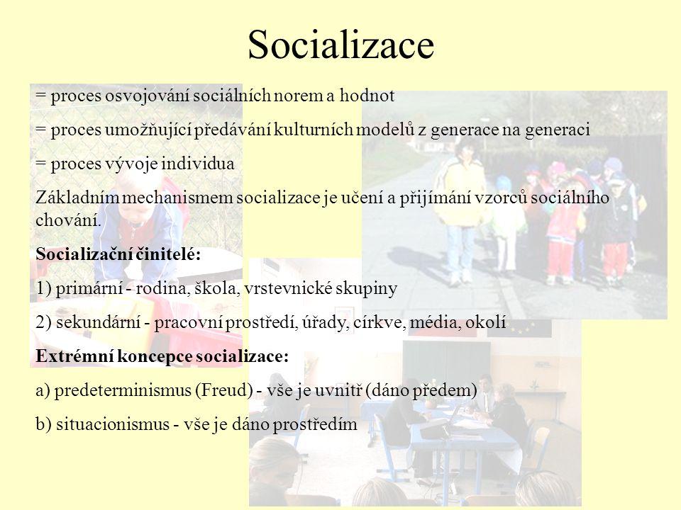 Socializace = proces osvojování sociálních norem a hodnot