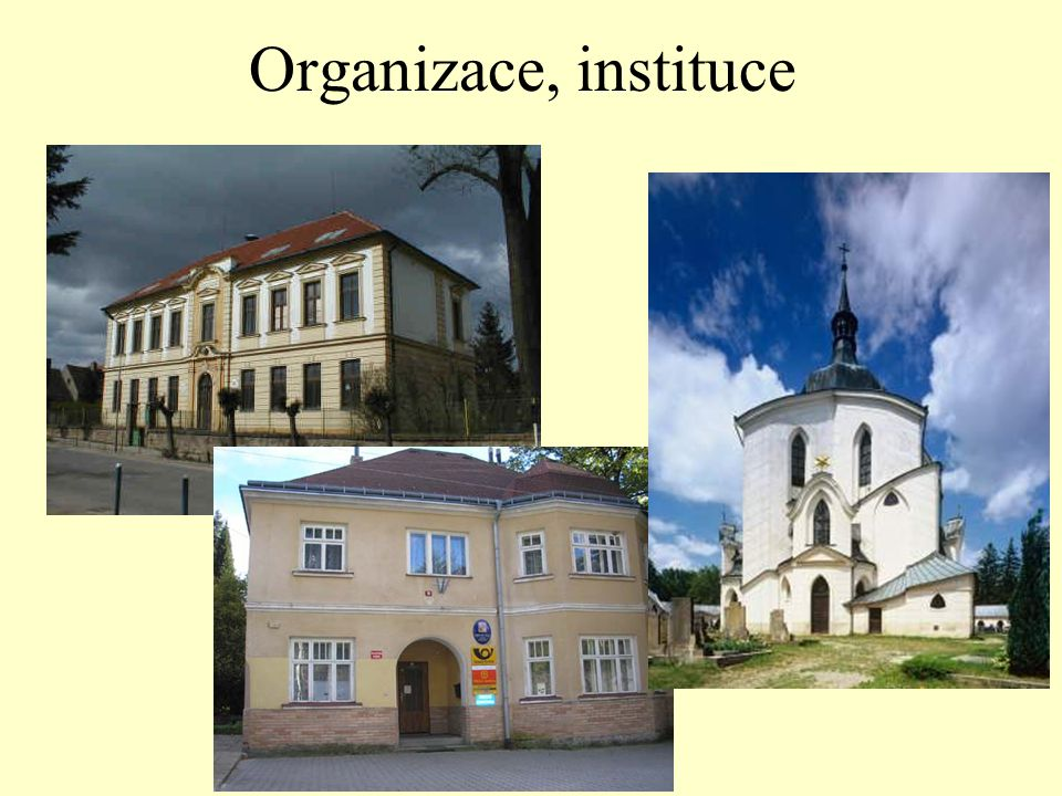 Organizace, instituce