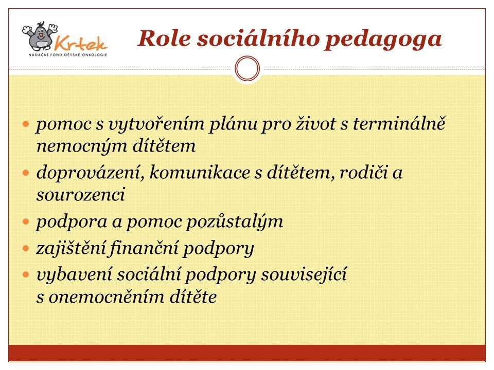 Role sociálního pedagoga