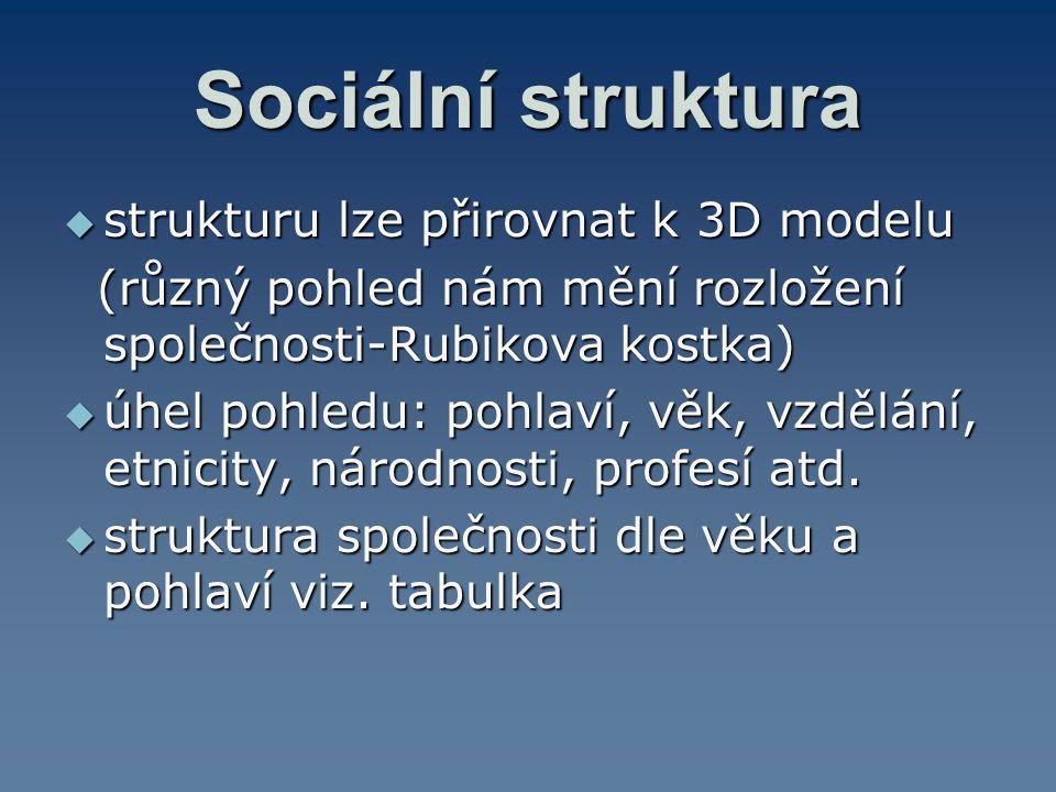 Sociální struktura strukturu lze přirovnat k 3D modelu