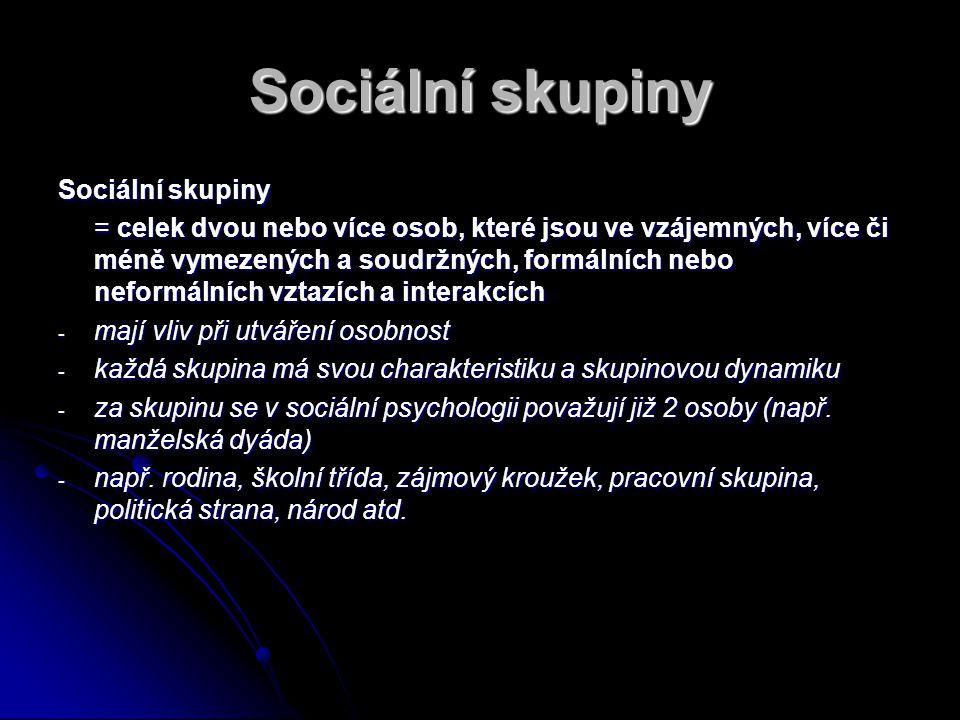 Sociální skupiny Sociální skupiny