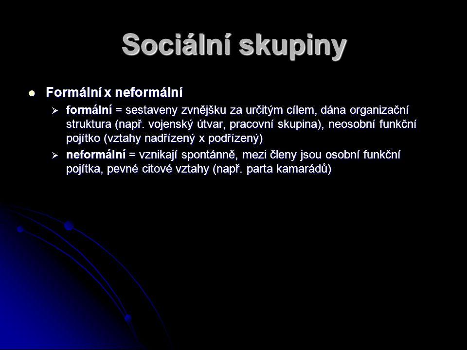 Sociální skupiny Formální x neformální