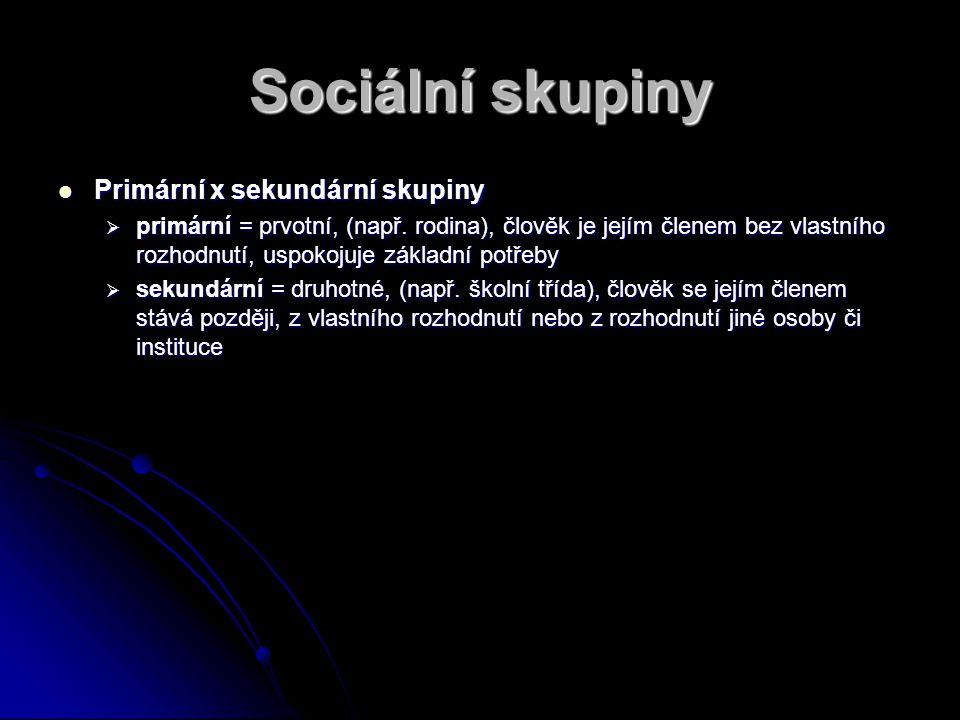 Sociální skupiny Primární x sekundární skupiny