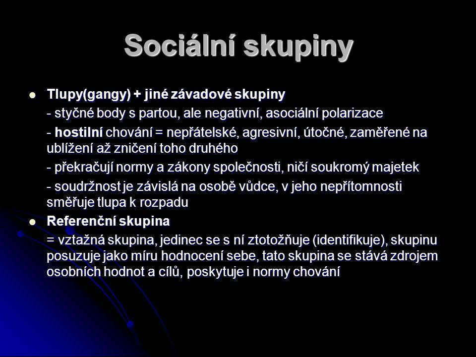 Sociální skupiny Tlupy(gangy) + jiné závadové skupiny