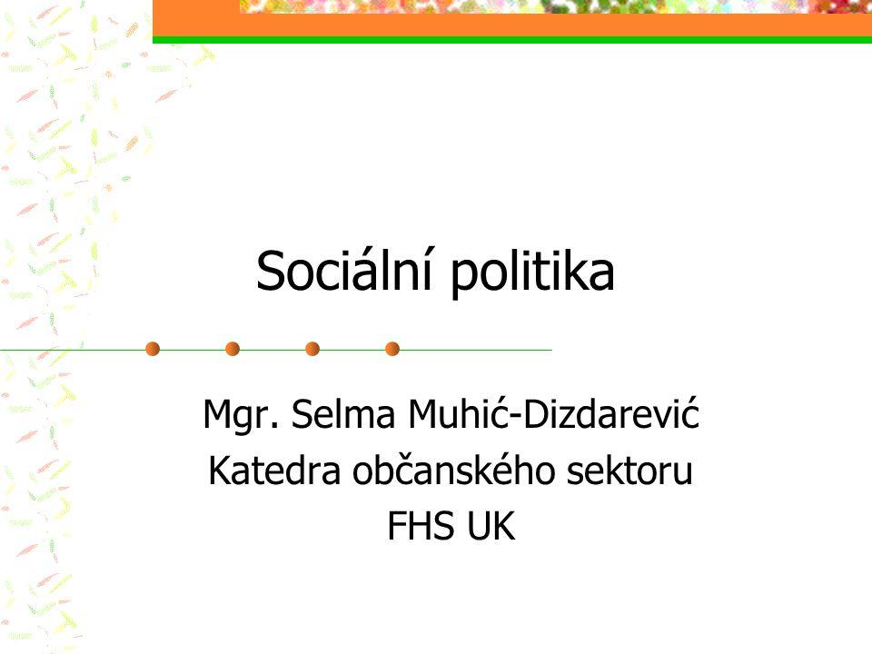 Mgr. Selma Muhić-Dizdarević Katedra občanského sektoru FHS UK