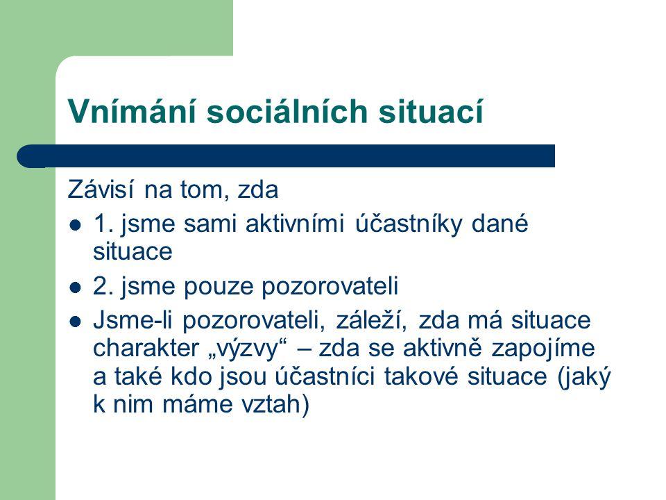 Vnímání sociálních situací