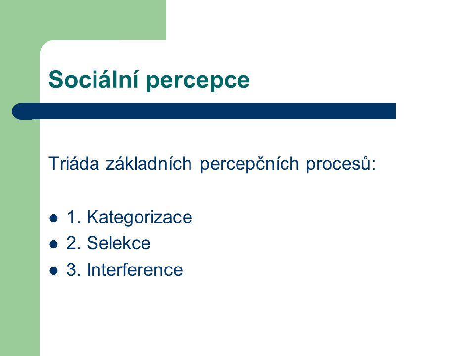 Sociální percepce Triáda základních percepčních procesů: